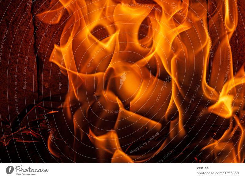 Feuer im Kamin Häusliches Leben Winter heiß Wärme gelb orange Warmherzigkeit Umweltverschmutzung brennen heizen Brennholz Flamme Farbfoto Innenaufnahme