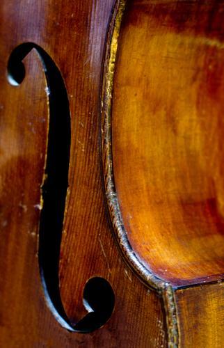 Musik liegt in der Luft Feste & Feiern Kunst Tanzen Veranstaltung Party Musikinstrument Kontrabass Streichinstrumente Konzert Holz Zeichen Ornament berühren