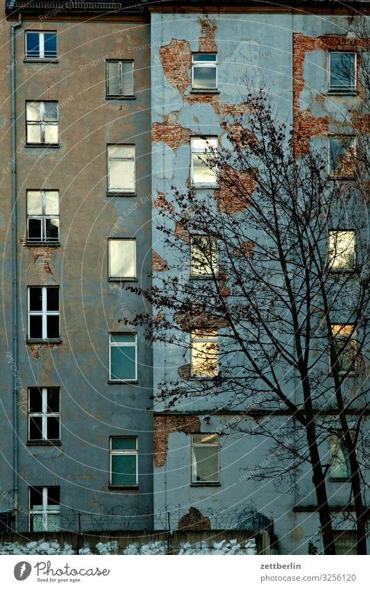 Fassade am Abend Berlin Großstadt Stadtzentrum Gebäude Hauptstadt Haus Herbst Menschenleer Berlin-Mitte Textfreiraum Stadtleben Häusliches Leben Wohngebiet