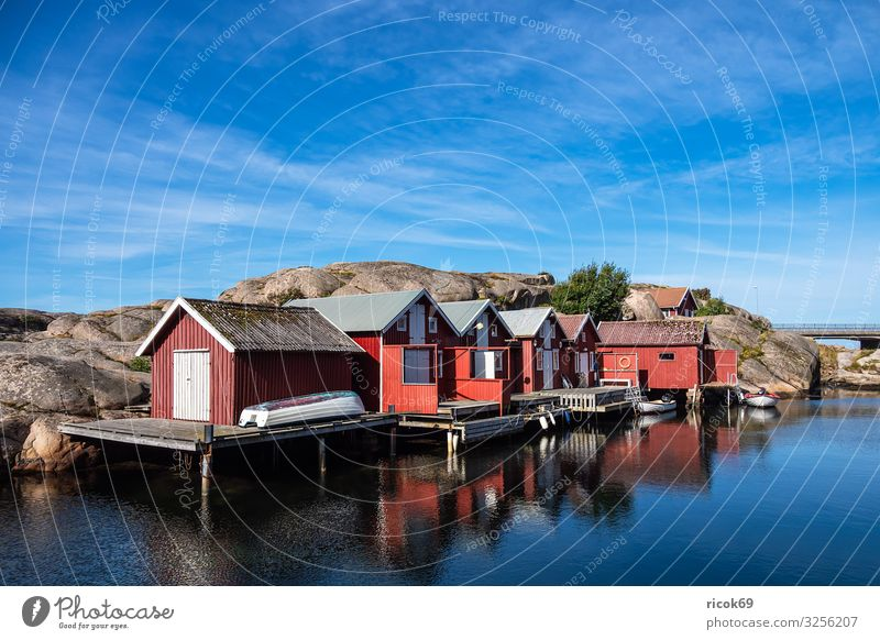 Blick auf den Ort Smögen in Schweden Erholung Ferien & Urlaub & Reisen Tourismus Sommer Meer Haus Natur Landschaft Wasser Wolken Felsen Küste Nordsee Dorf Hafen