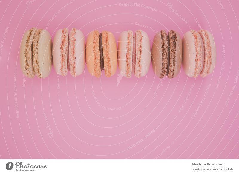 Bunte Makronen in einer Reihe auf rosa Hintergrund Dessert Design lecker oben Macaron süß Biskuit Backwaren Lebensmittel Konfekt Bonbon Pastell farbenfroh