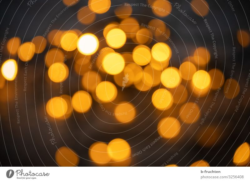 Golden Hour Nachtleben Veranstaltung Feste & Feiern Weihnachten & Advent Silvester u. Neujahr Hochzeit leuchten gold orange Gefühle Lichterkette Unschärfe