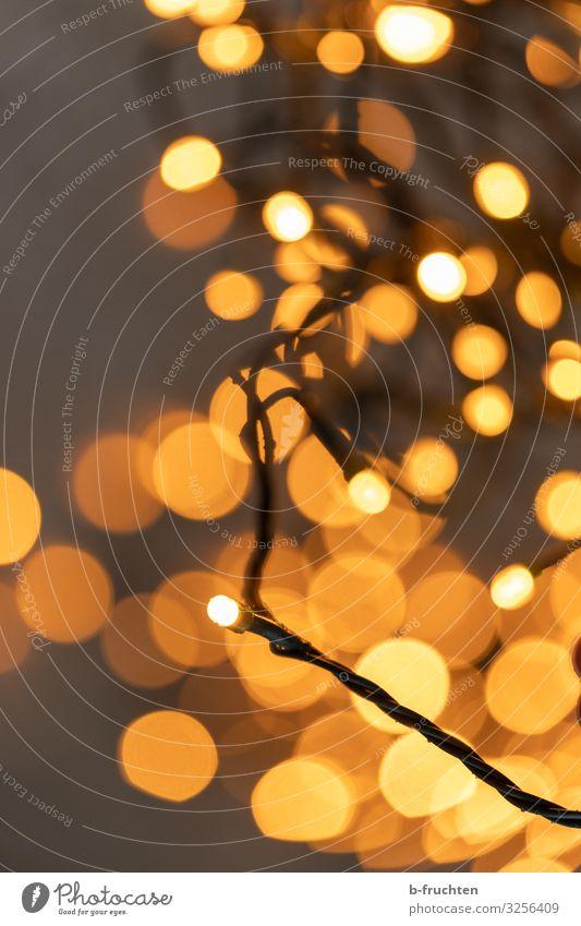 Goldene Stunde Feste & Feiern Weihnachten & Advent Silvester u. Neujahr Zeichen glänzend leuchten Glück gold orange Lichterkette Unschärfe Kette Lampe