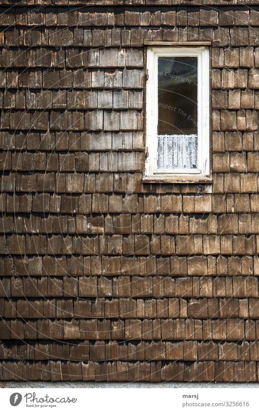 Schmales Fenster mit kurzer Gardine an schindelgedeckter Fassade Starke Tiefenschärfe Kontrast Tag Morgen Menschenleer Gedeckte Farben Farbfoto eigenwillig