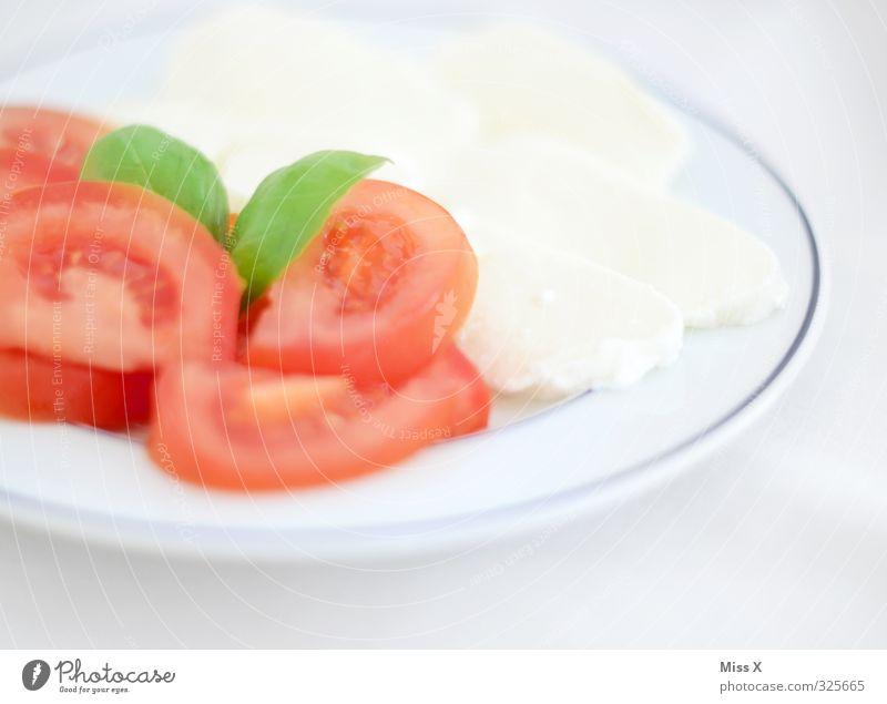 rot weiß grün Gesundheit Lebensmittel frisch Ernährung Kräuter & Gewürze Gemüse lecker Teller Tomate Mittagessen Festessen Büffet Brunch Basilikum Milcherzeugnisse Italienische Küche