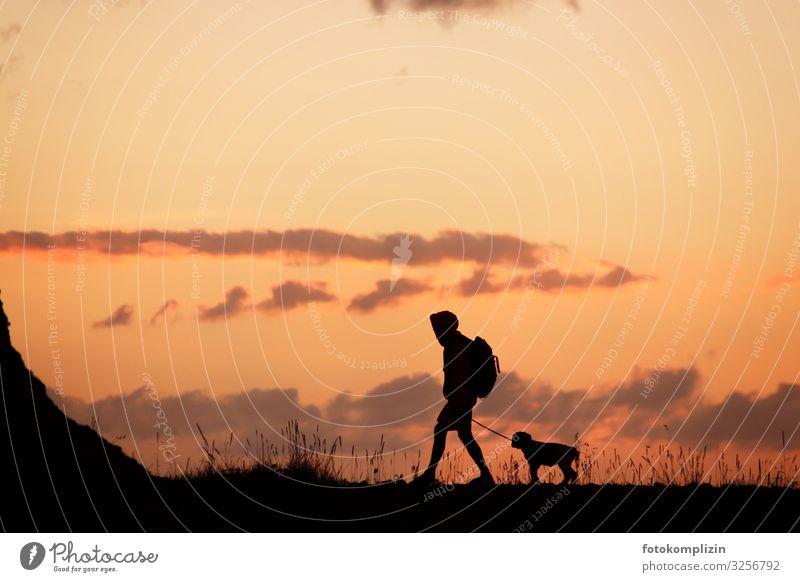 wanderer mit hund Junger Mann Jugendliche Erwachsene 1 Mensch Natur Himmel Wolken Horizont Sonnenaufgang Sonnenuntergang Haustier Hund Welpe Tier Tierjunges