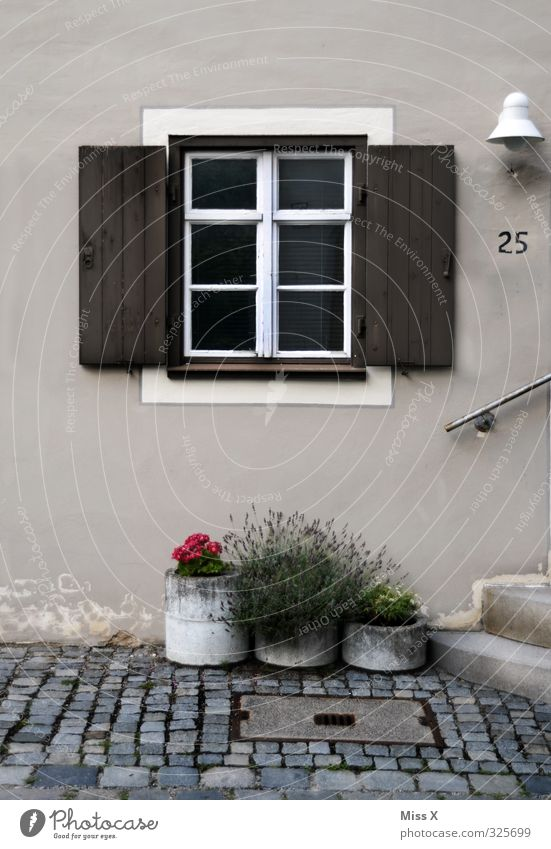 Fenster IV Häusliches Leben Wohnung Haus Dekoration & Verzierung Altstadt Terrasse Tür Ziffern & Zahlen Fensterladen Blumentopf Topfpflanze mediterran