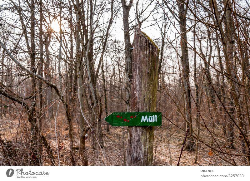 Müll im Wald karg Herbst Ast Hinweisschild Umweltschutz Baum Natur Schriftzeichen Umweltverschmutzung Schilder & Markierungen trist Landschaft Himmel