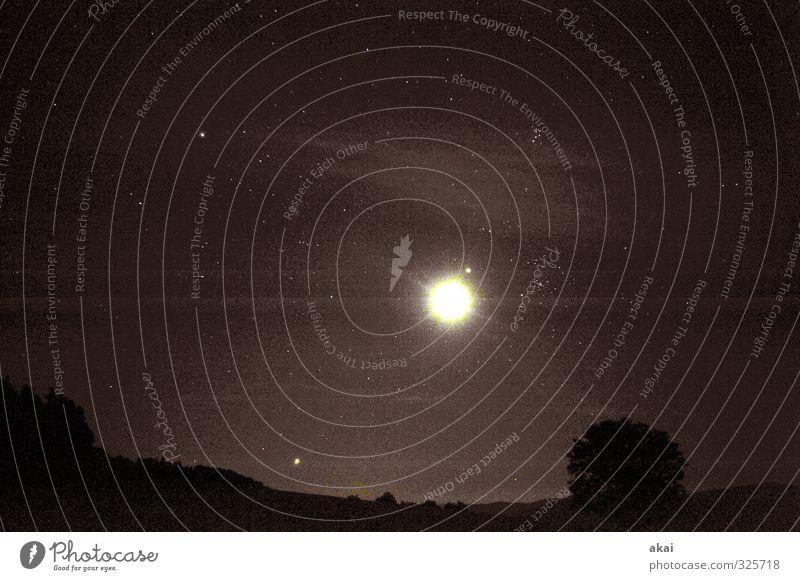 Nächtliche Stimmung mit Mond und Sternenhimmel Nacht Dämmerung Wolken Landschaft Baum unheimlich gruselig Angst Furcht hell dunkel Langzeitbelichtung Astronomie