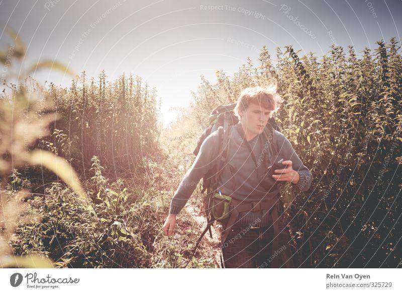 Mensch Himmel Natur Jugendliche Mann Pflanze Sommer Landschaft Erwachsene Junger Mann Umwelt 18-30 Jahre Leben Gras Frühling Horizont