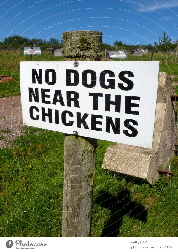 Geschriebenes | klare Ansage... Schriftzeichen Schilder & Markierungen Hinweisschild Warnschild Aggression bedrohlich Überwachung Verbote Landwirtschaft