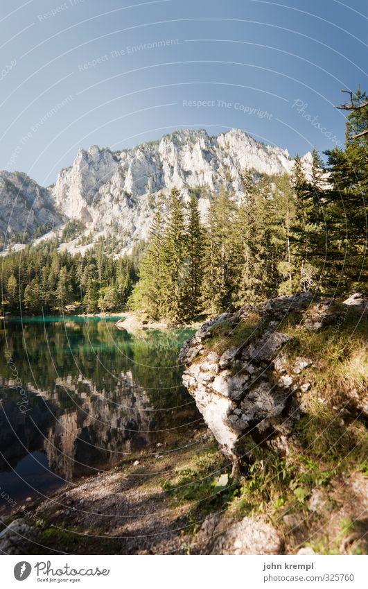 Urlaub! Umwelt Landschaft Wasser Wolkenloser Himmel Schönes Wetter Wald Alpen Berge u. Gebirge Seeufer Österreich Bundesland Steiermark Erholung authentisch