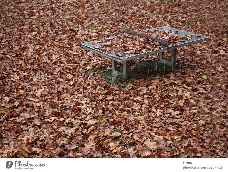 Winterpause Sportstätten Tischtennis Tischtennisplatte Umwelt Natur Herbst Blatt Herbstlaub ruhig Müdigkeit Erschöpfung Endzeitstimmung geheimnisvoll