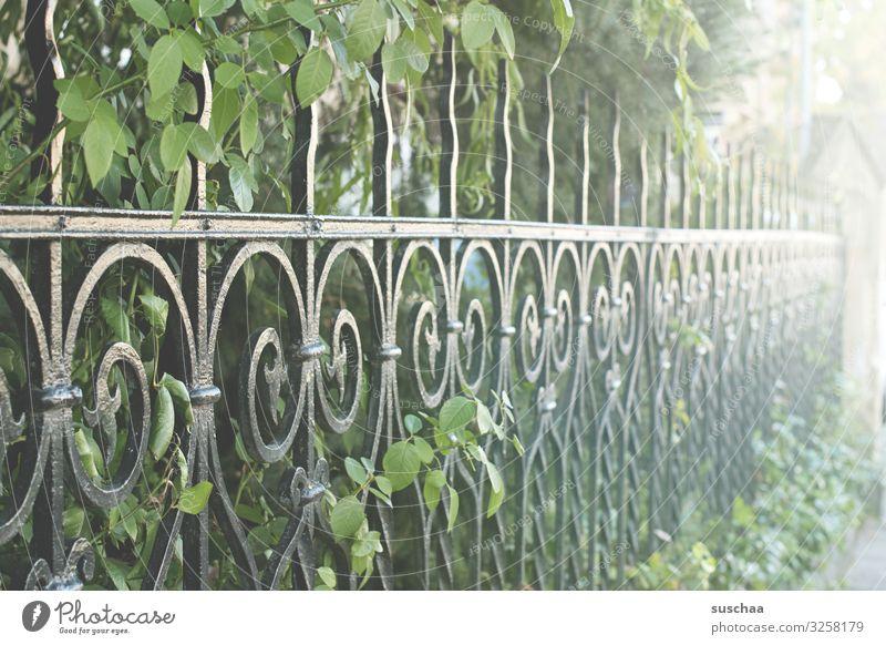 vornehm umzäunt Perspektive Metallzaun Gartenzaun Eisenzaun Parkzaun historisch elegant reich Zaun Besitz Schutz retten Grundstück Schmiedeeisen rustikal antik