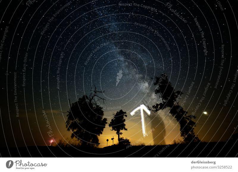 Einmal hochgucken bitte. Landschaft Himmel Nachthimmel Stern Baum träumen frei Tatkraft Ferne Milchstrasse Pfeil Farbfoto Außenaufnahme Langzeitbelichtung