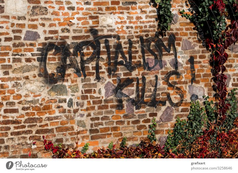 Capitalism Kills Graffiti auf Ziegelmauer mit Efeu kunst kunstwerk ziegel wirtschaft kapitalismus kapitalismus tötet stadt kritik wirtschaftlich anschmieren