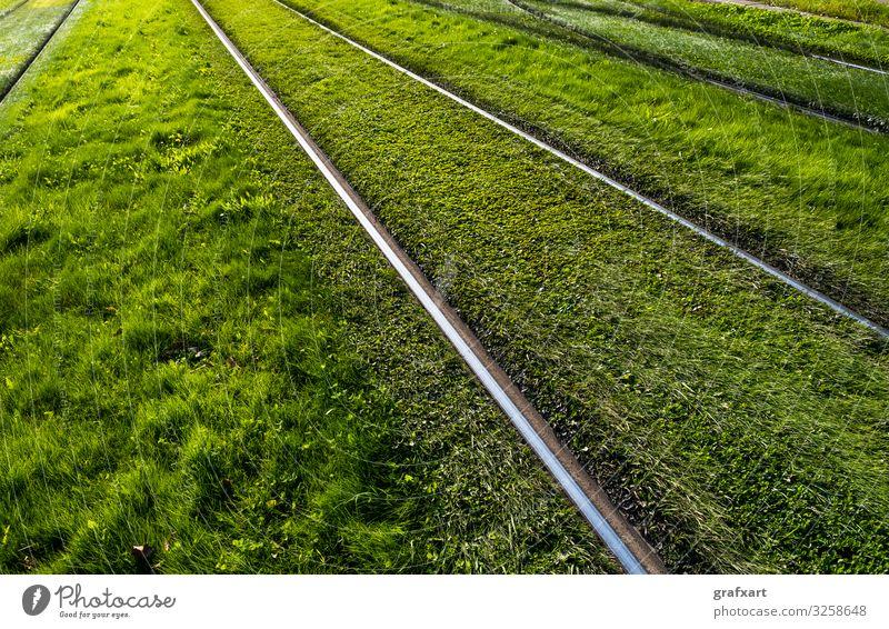 Schienen durch grüne Wiese hintergrund fracht stadt konzept detail entwicklung richtung ökologisch ökologie umwelt umweltschutz feld gras industrie