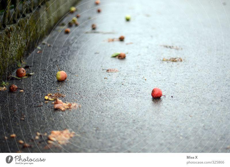 reif Lebensmittel Frucht Apfel Herbst schlechtes Wetter nass Fallobst Birne Herbststurm herbstlich Herbstlaub Blatt Herbstwetter Bürgersteig Farbfoto