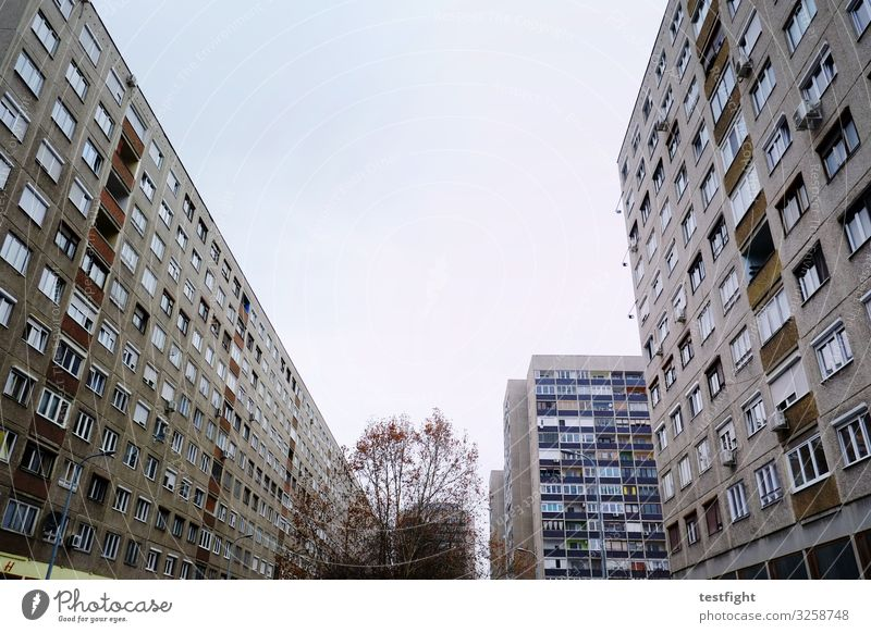so leben wir Stadt Haus Hochhaus Bauwerk Gebäude Architektur Mauer Wand Zukunftsangst gefährlich Häusliches Leben Plattenbau grau dunkel Fenster Beton