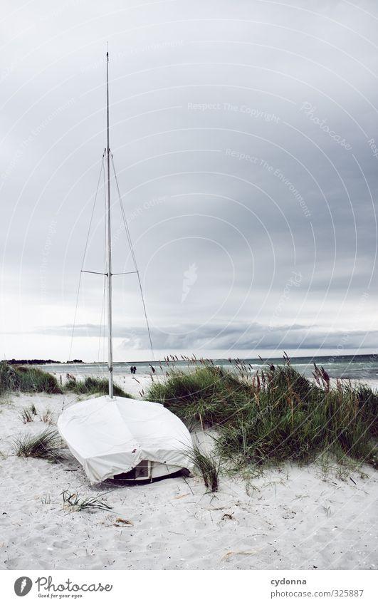 Ostsee Natur Ferien & Urlaub & Reisen Sommer Meer Einsamkeit Landschaft ruhig Wolken Strand Umwelt Ferne Freiheit Küste Horizont Wind Idylle