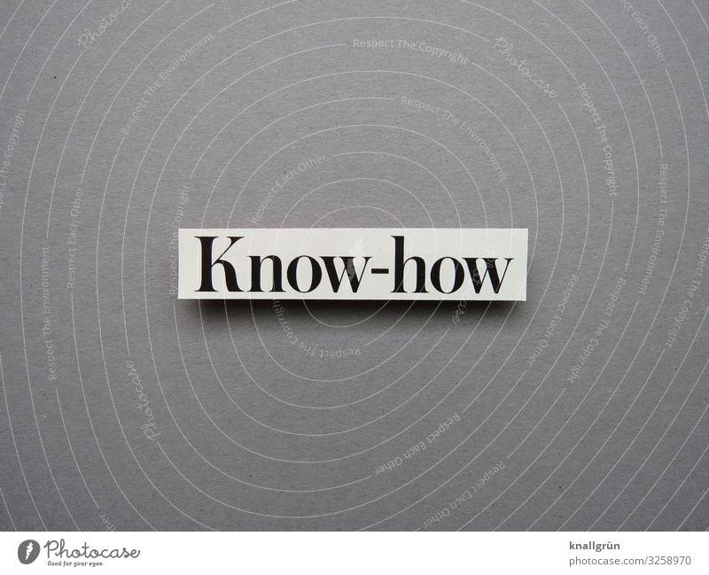 Know-how Wissen Bildung gewusst wie lernen können Studium Buch lesen Bibliothek Literatur Schule Information Weisheit Bücher Wissenschaften Idee Inspiration