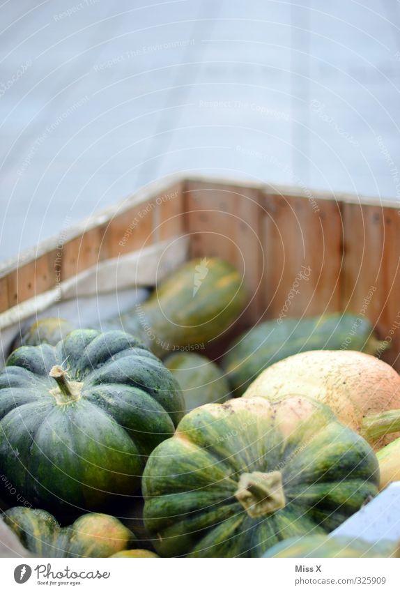Kürbis Lebensmittel Gemüse Ernährung Bioprodukte Vegetarische Ernährung frisch Gesundheit lecker grün Gesunde Ernährung Kürbiszeit Marktstand Gemüsehändler