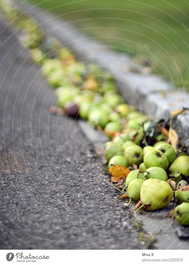 Birnen Lebensmittel Frucht Ernährung Bioprodukte Herbst dehydrieren lecker süß reif Fallobst Ernte Farbfoto mehrfarbig Außenaufnahme Menschenleer