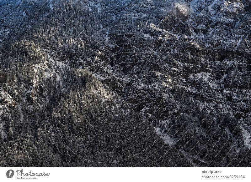 Massiv Winter Berge u. Gebirge Natur Landschaft Schnee Baum Wald Felsen Alpen Stein Abenteuer kalt massiv Nadelwald Panorama Sonnenschein Panorama (Aussicht)