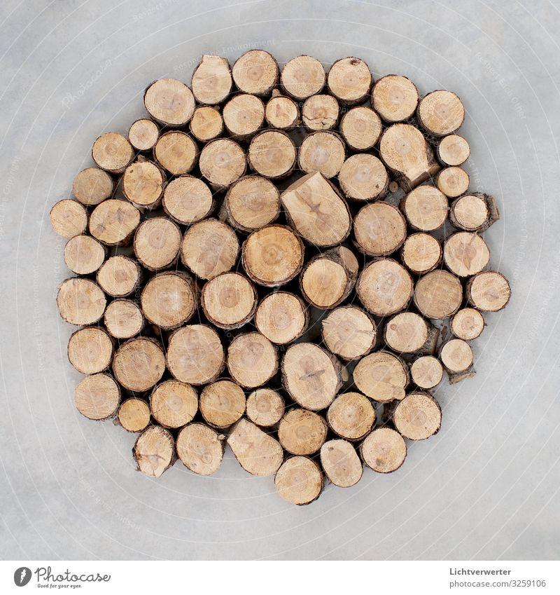 CIRCLE Kunst Ausstellung Umwelt Natur Landschaft Pflanze Baum Holz Zeichen braun grau Kreis kreisrund Maserung Anordnung Strukturen & Formen Gedeckte Farben