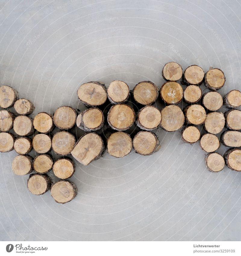 DIE WELLE Kunst Umwelt Pflanze Baum Wald Wellen Zeichen braun grau Abenteuer nachhaltig Natur Wachstum baumkreise Strukturen & Formen Jahresringe Baumstamm