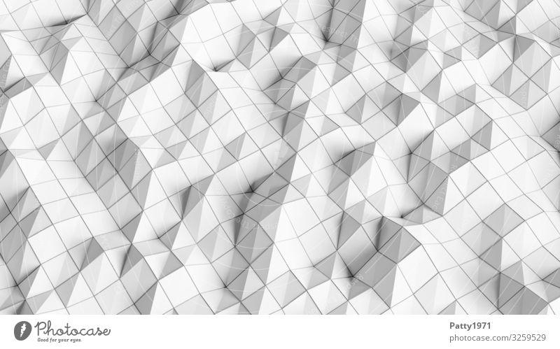 Wireframe - 3D Render Technik & Technologie Drahtgitter Oberflächenstruktur Netz Netzwerk eckig Bewegung bizarr komplex Surrealismus Symmetrie Schwarzweißfoto