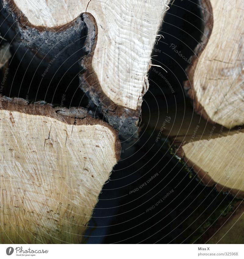 Baumaterial / Holz vor der Hütte braun Baumstamm Brennholz Holzstapel Baumrinde Jahresringe Wellenform Säge Farbfoto Nahaufnahme Detailaufnahme