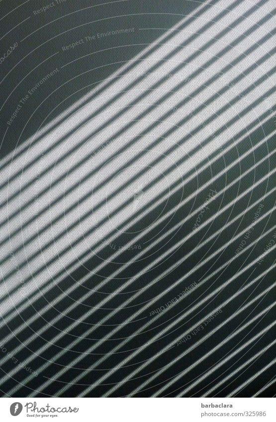 schwarzweißgrau | Schattenspiel Mauer Wand Fassade Jalousie Linie Streifen Design Kreativität Präzision Schutz Symmetrie diagonal parallel Geometrie