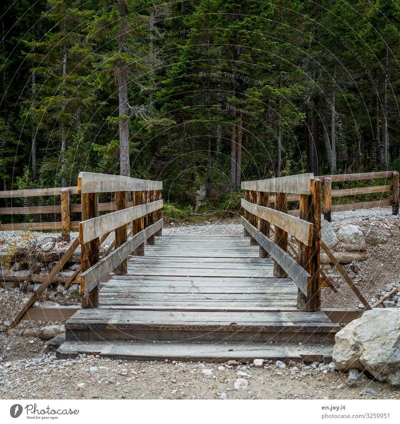 Holzbrücke über leeres Flussbett mit Wald im Hintergrund Brücke Steg Holzsteg trocken Geröll Felsen Steine Tannen Nadelbäume Nadelwald Wege & Pfade Geländer