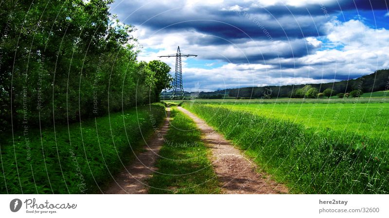 Feldweg Himmel grün blau Gras Wege & Pfade Idylle Pflanze