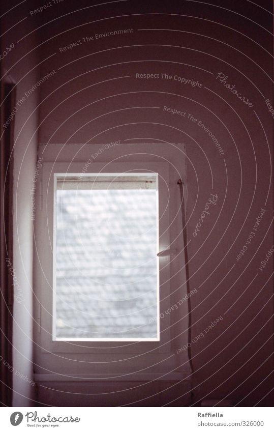 fenster Haus Fenster grau Aussicht Innerhalb (Position) Fensterscheibe Griff Kleinstadt Fensterblick Außenseite Schiefer Fensterrahmen Rollo Fachwerkfassade