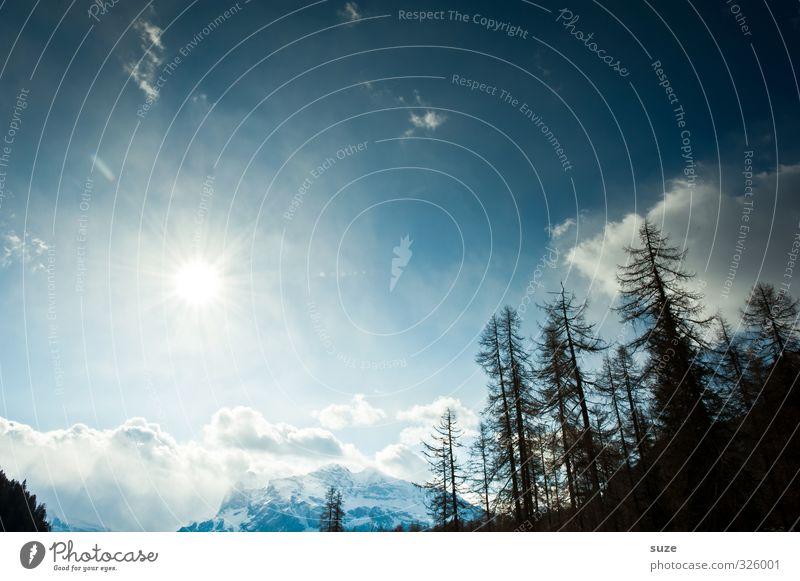 Einmal Himmel und zurück Natur Ferien & Urlaub & Reisen blau Sonne Landschaft Wolken Winter Wald Umwelt Berge u. Gebirge Schnee außergewöhnlich Felsen Klima