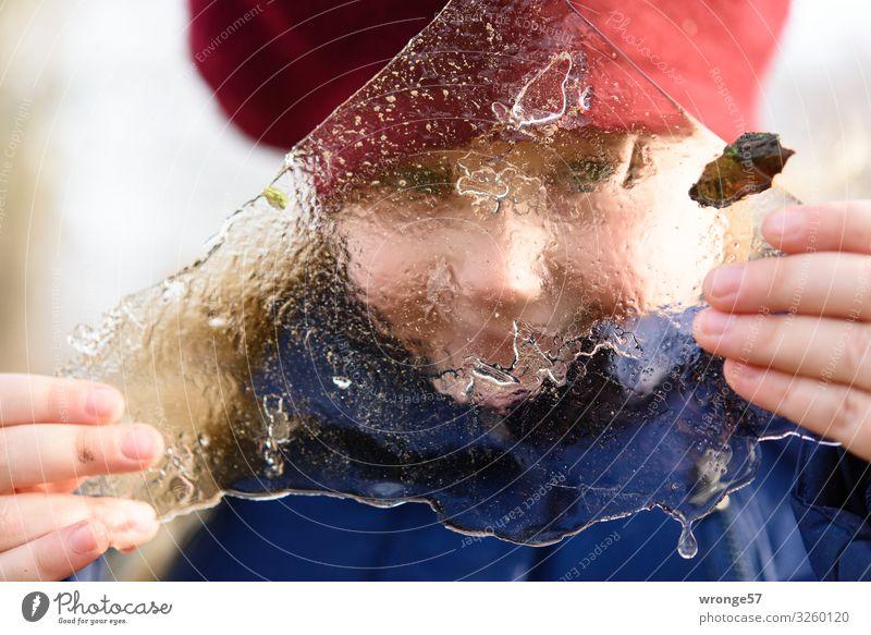 Den Winter in Händen halten Abenteuer Kind Mädchen 1 Mensch 3-8 Jahre Kindheit Eis Frost kalt nah blau rot weiß Freude Eisscholle frieren Blick festhalten