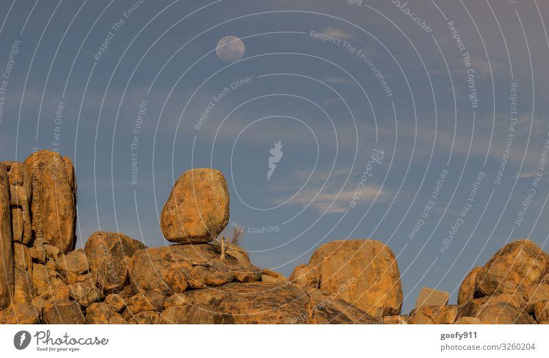 weitsichtig / Bis zum Mond Ausflug Abenteuer Ferne Freiheit Safari Expedition Umwelt Natur Landschaft Erde Himmel Wolken Horizont Sonnenlicht Vollmond Wärme
