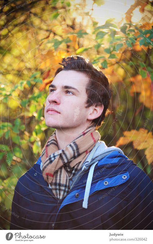 Herbstlich(t) Mensch Kind Natur Jugendliche blau Pflanze Sonne Erholung ruhig Junger Mann 18-30 Jahre Erwachsene gelb Umwelt Denken
