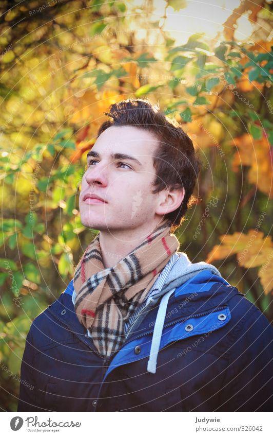 Herbstlich(t) wandern Mensch maskulin Junger Mann Jugendliche Erwachsene Kopf 13-18 Jahre Kind 18-30 Jahre Umwelt Natur Sonne Schönes Wetter Pflanze Sträucher