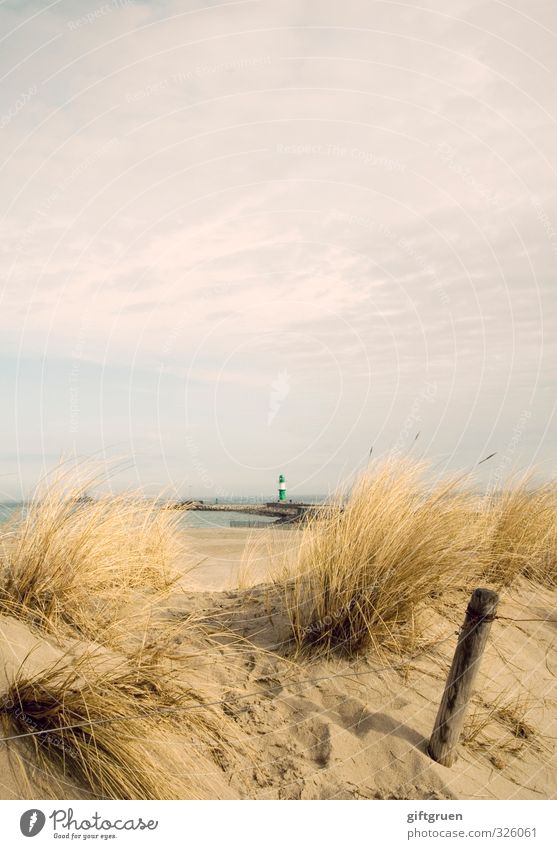 ostsee Himmel Natur grün Wasser Pflanze Meer Landschaft Wolken Strand Umwelt Gras Küste Sand Deutschland Urelemente Zaun