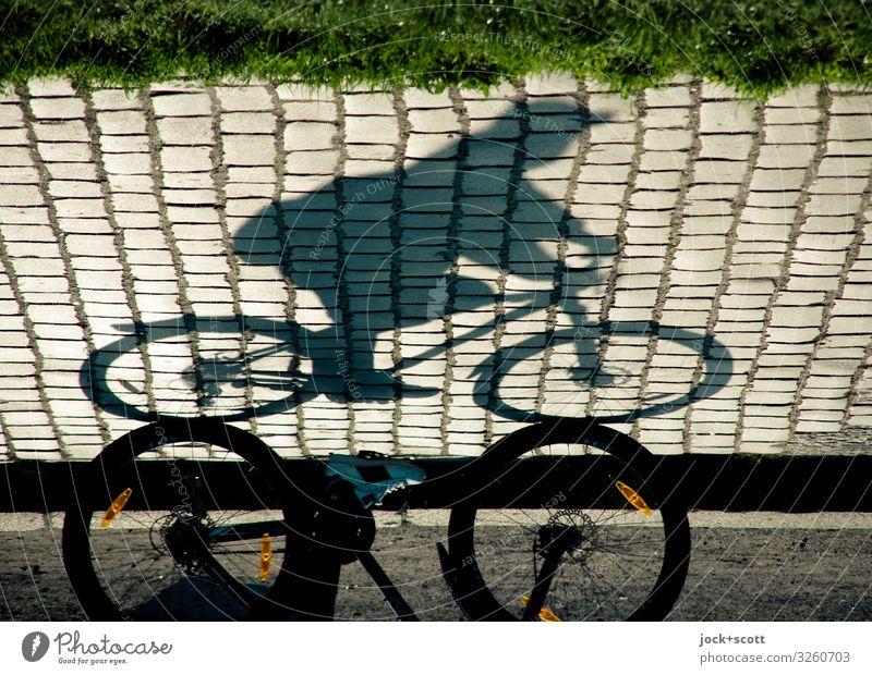 Sonntagsfahrer als Schatten auf Straße mit Kopfsteinpflaster Glück Fahrradfahren Ausflug maskulin 1 Mensch Sommer Wärme Gras Park Prenzlauer Berg Wege & Pfade