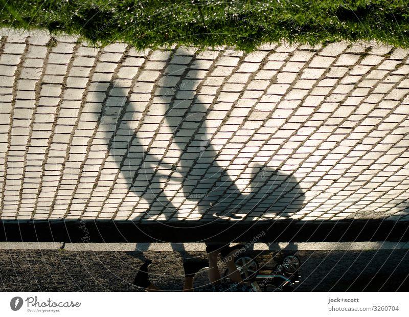 Spaziergang am Sonntag Sommer Park Fußgänger Wege & Pfade Kopfsteinpflaster Kinderwagen gehen lang positiv unten Stimmung Zufriedenheit Einigkeit Gelassenheit