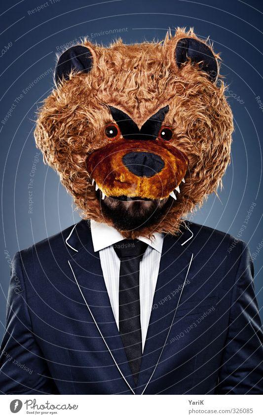 BB business bear Büroarbeit Mensch Kopf Haare & Frisuren 1 Anzug Fell Krawatte Tier skurril Bär Surrealismus lustig Farbfoto Studioaufnahme Hintergrund neutral