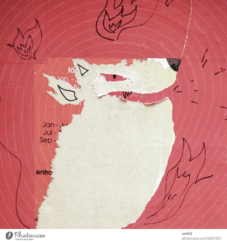 Ausgefuchst weiß rot Tier schwarz lachen Kunst wild Kopf Schriftzeichen kaputt Papier Riss böse Zeichnung Flamme Kunstwerk