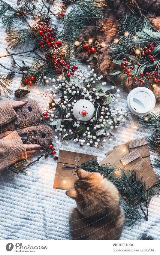 Winterstimmung und Weihnachtsgeschenke Vorbereitung Lifestyle Stil Freude Häusliches Leben Weihnachten & Advent Frau Erwachsene Hand Haustier Katze