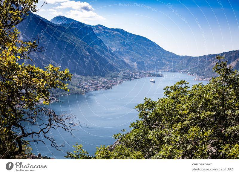 Bucht von Kotor bei Orahovac, Montenegro Ferien & Urlaub & Reisen Sommer Berge u. Gebirge wandern Landschaft Wasser Himmel Schönes Wetter Baum Küste Meer
