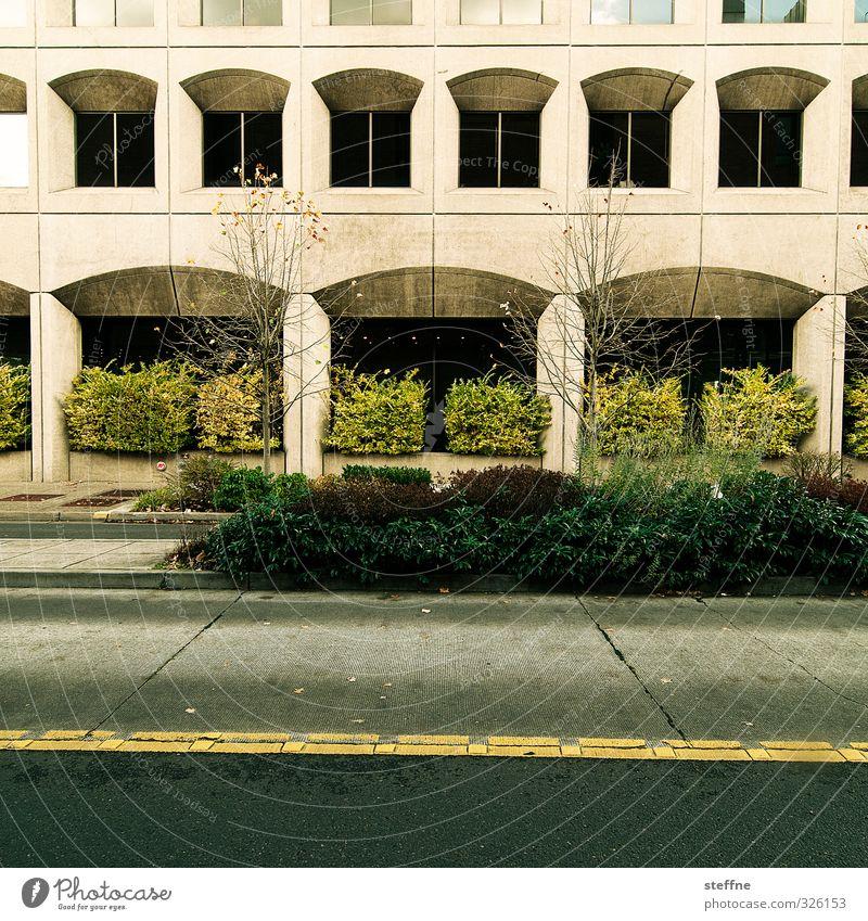 naturban Baum Sträucher eugene USA Stadt Stadtzentrum Haus Hochhaus Bankgebäude Mauer Wand Fassade Fenster Straße Farbfoto Außenaufnahme