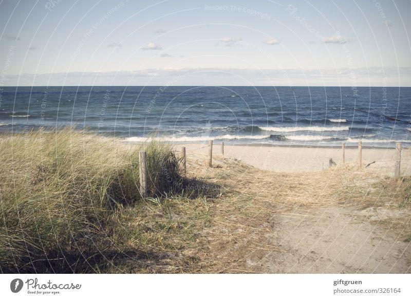 weg zum meer Umwelt Natur Landschaft Pflanze Urelemente Erde Sand Wasser Himmel Wolken Horizont Schönes Wetter Gras Grünpflanze Wellen Küste Strand Ostsee Meer